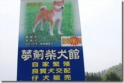 information_shopphoto01